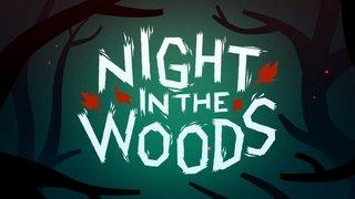 Трейнер Night in the Woods