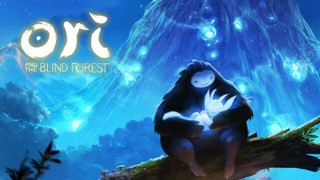 Чит трейнер Ori and the Blind Forest