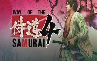Чит трейнер на Way of the Samurai 4