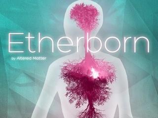 Чит трейнер на Etherborn