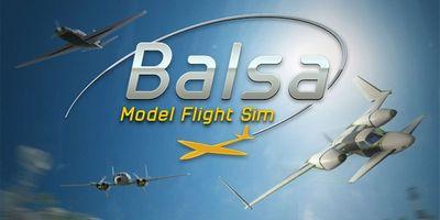 Трейнер на Balsa Model Flight Simulator