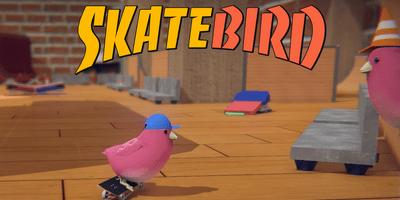 Трейнер на SkateBIRD